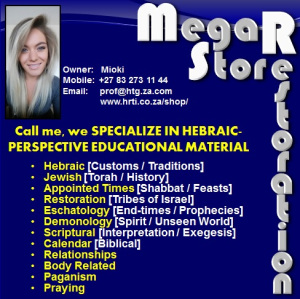 Mega Store Restoration