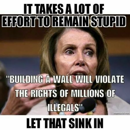 Building a Wall will violate the rights of millions of illegals