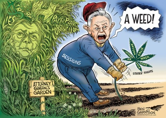 sessions_weed_ben_garrison-1024x728