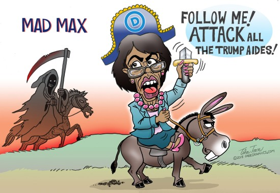 maxine_Waters-Tina-toon-