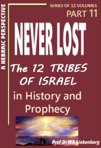 Never Lost - The Twelve Tribes of Israel - Mysteries in History and Prophecy! Book 11